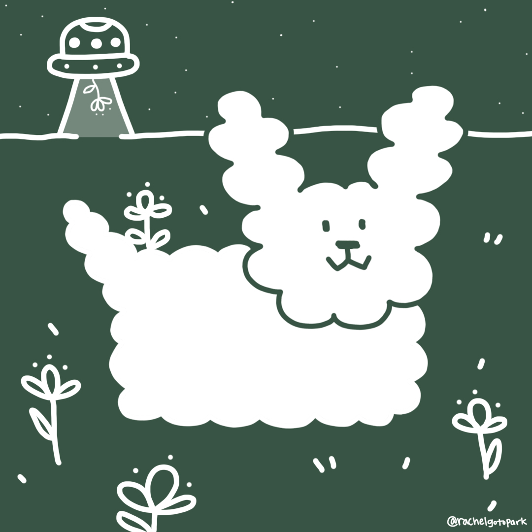 fluffy_puppy.jpg