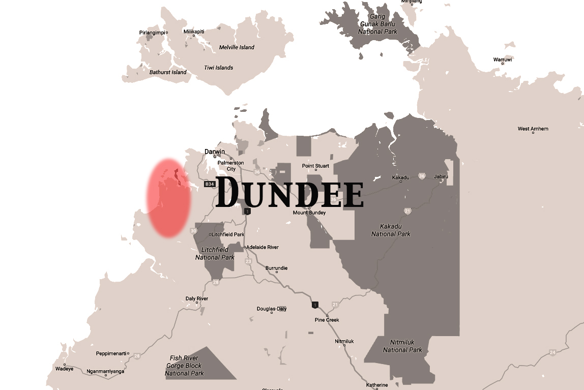 NT map BW Dundee.jpg