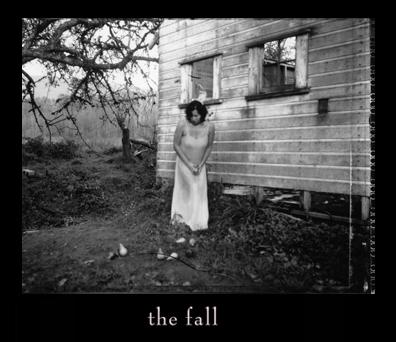 3_fall.jpg