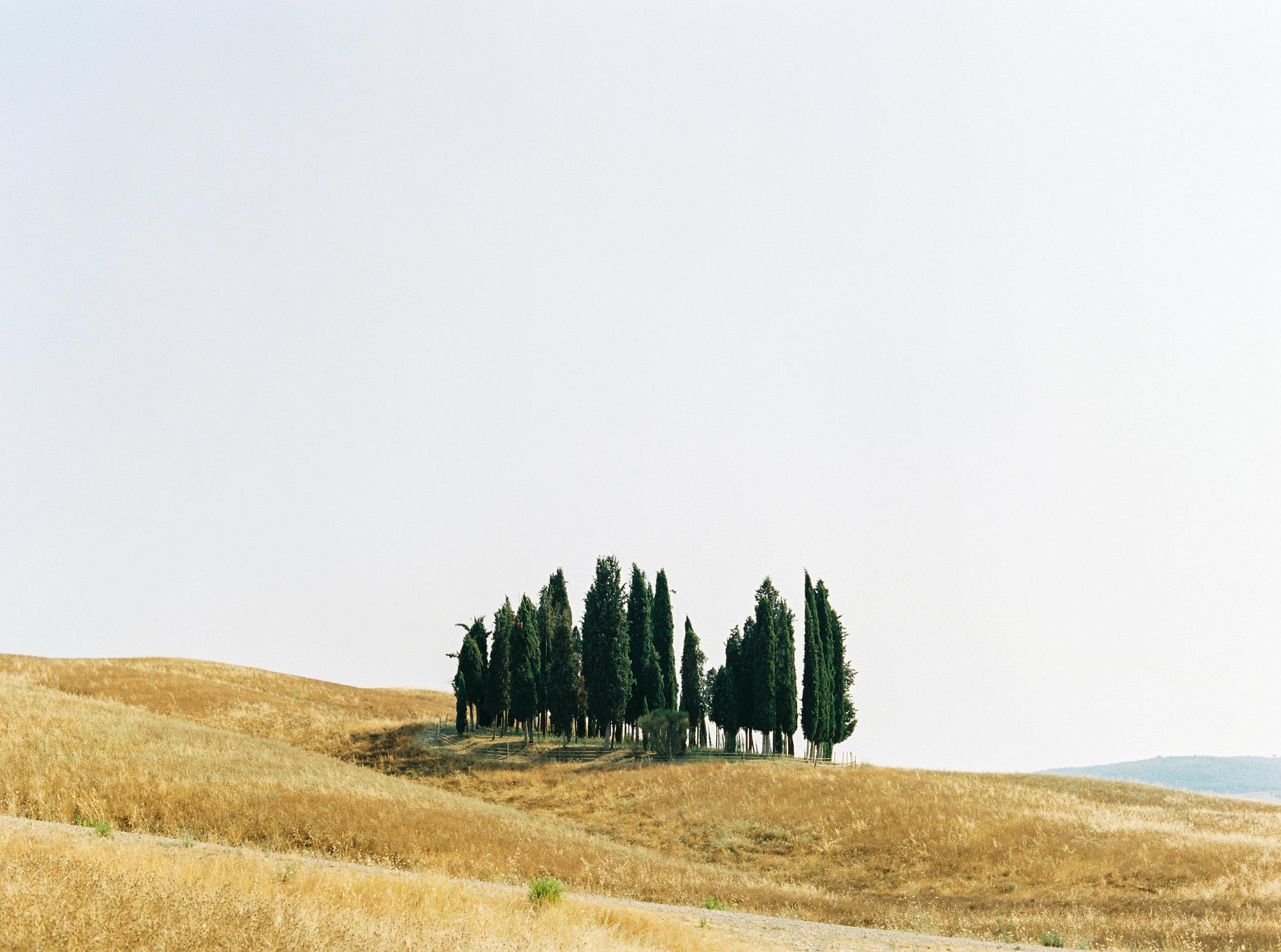 tusca1.jpg