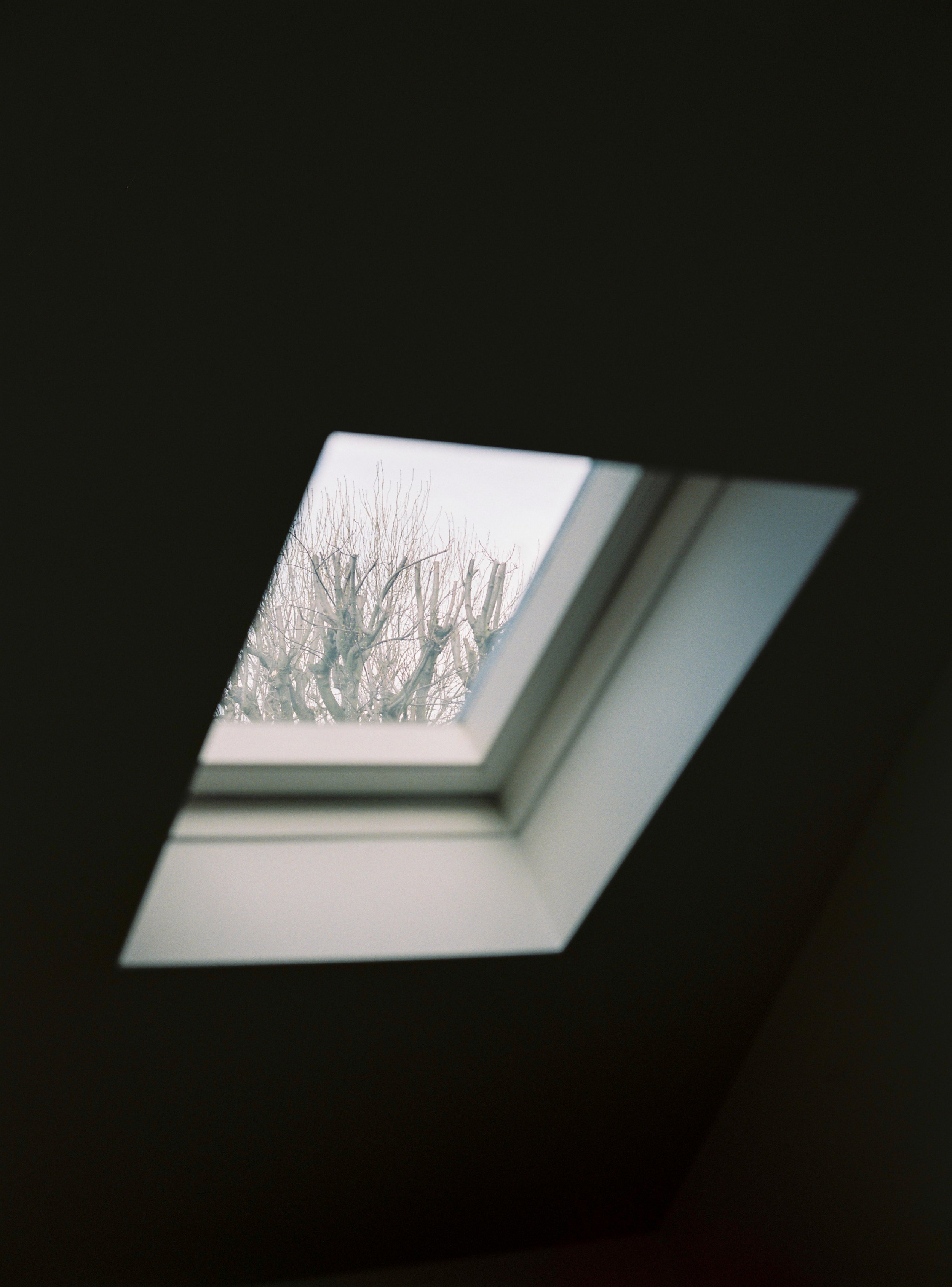 Leila_Winter16-457.jpg