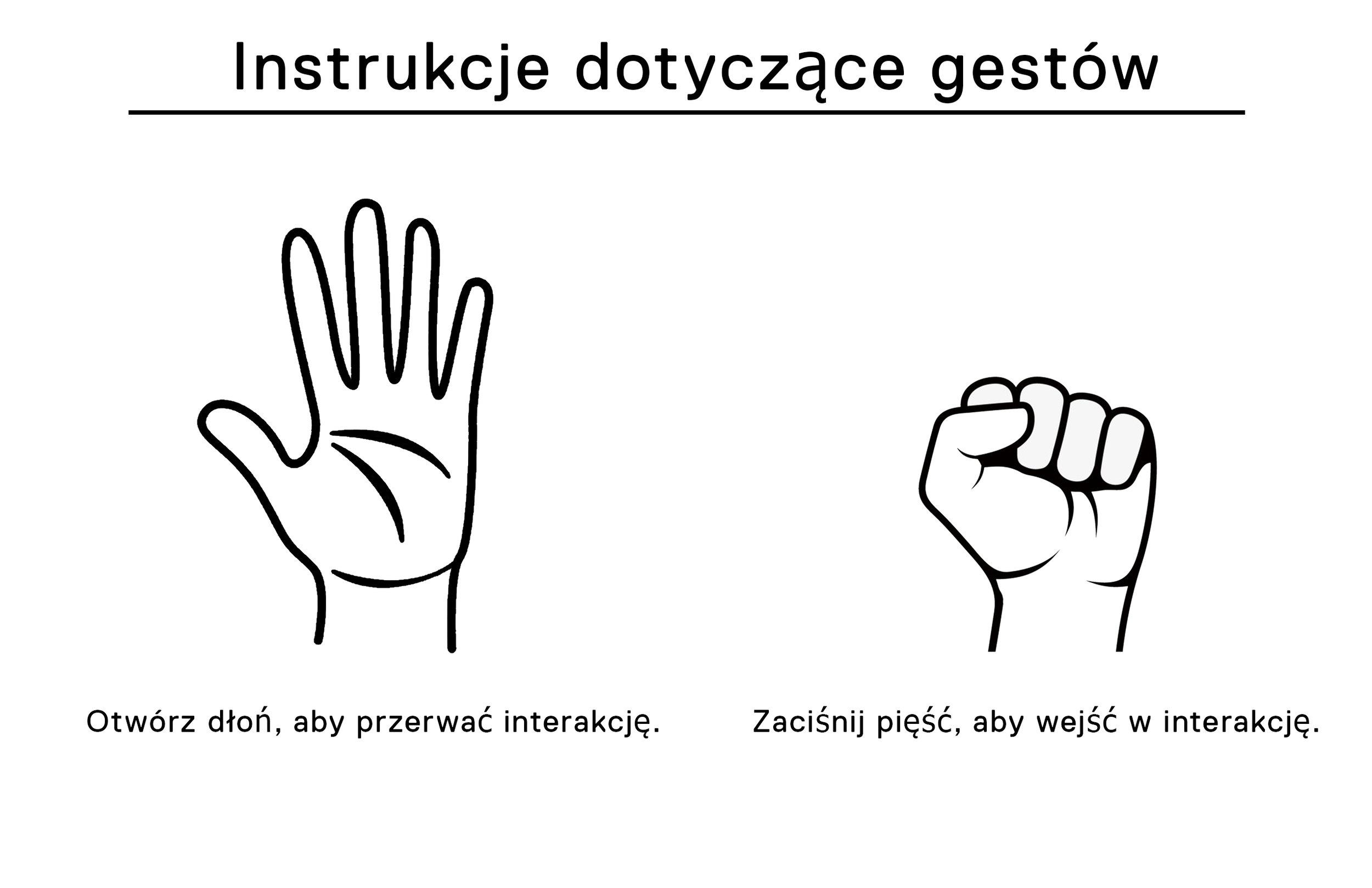 Hand Gesture Controls - Polish.jpg