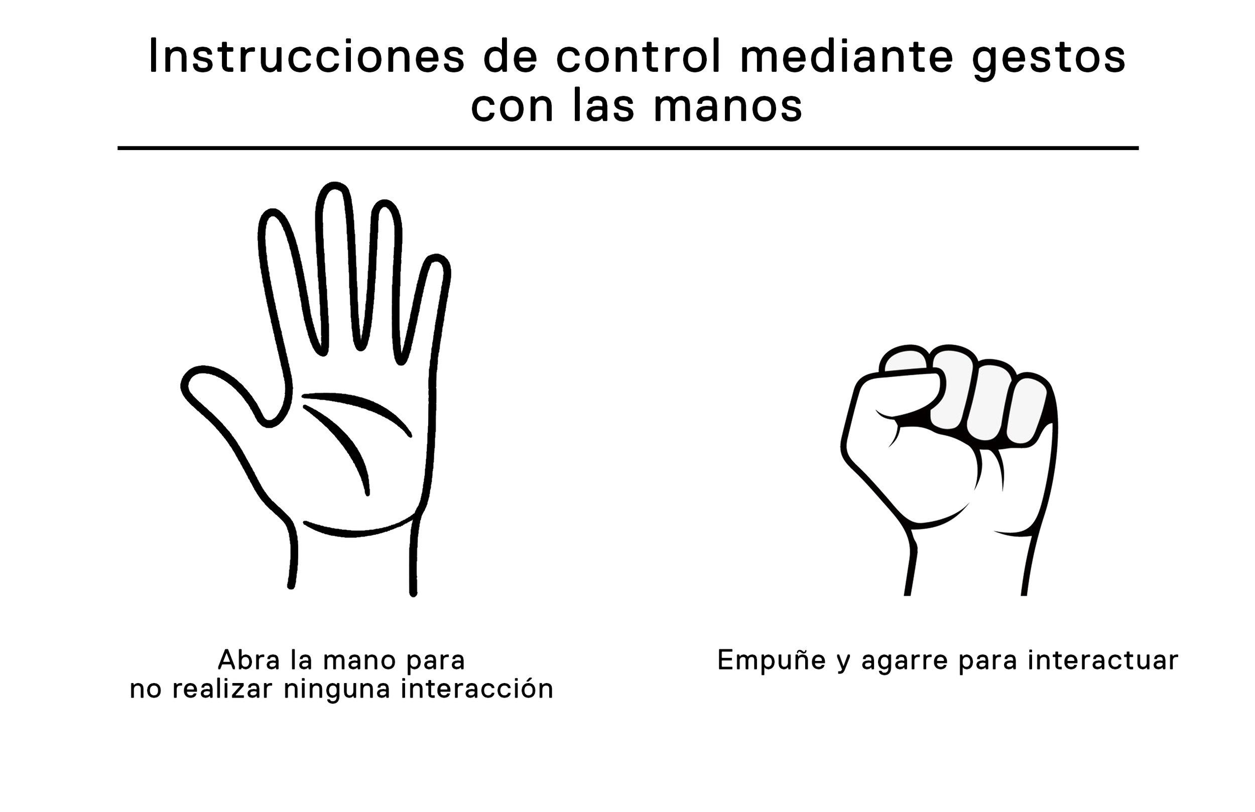Hand Gesture Controls - Spanish.jpg