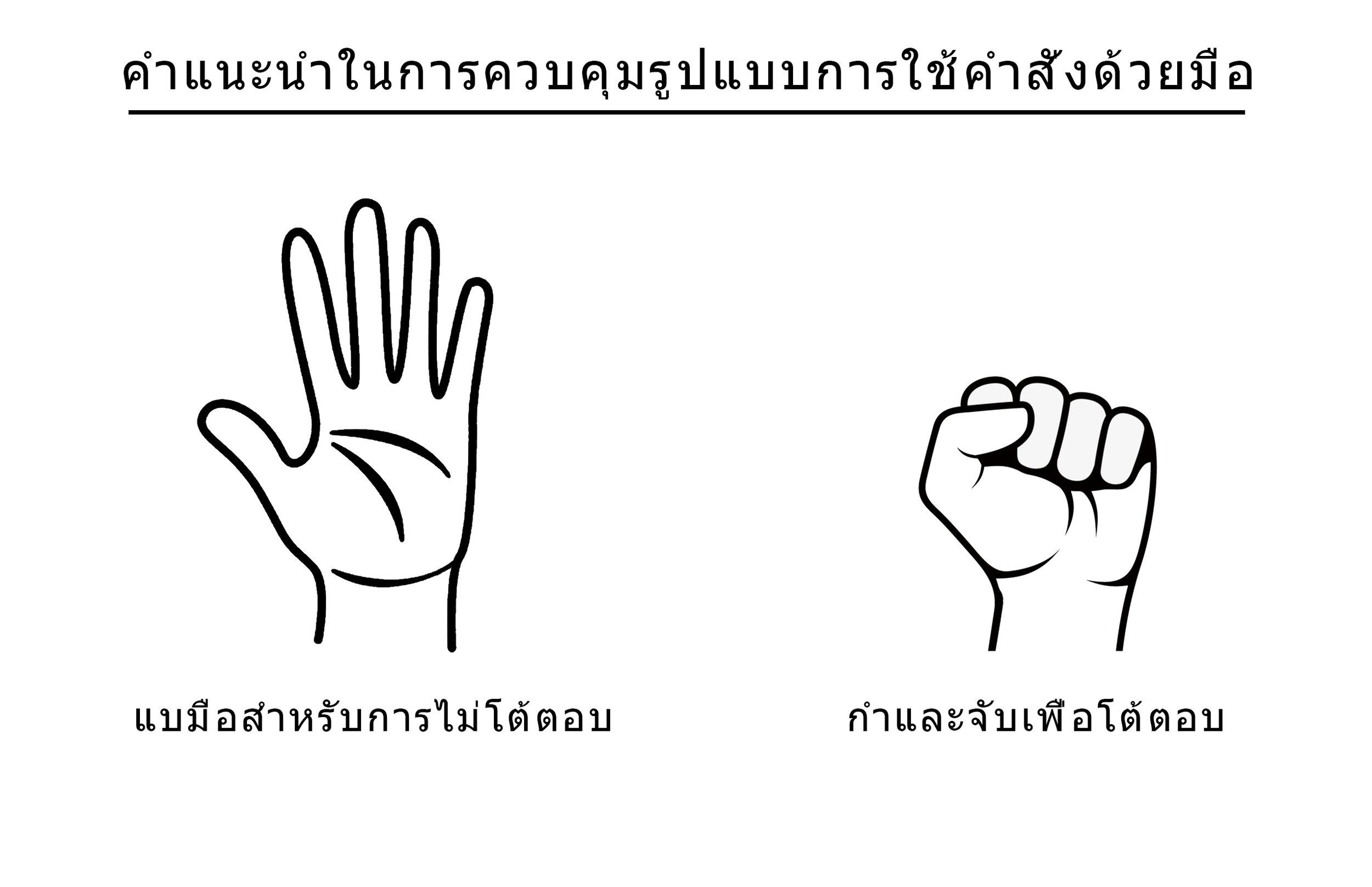 Hand Gesture Controls - Thai.jpg