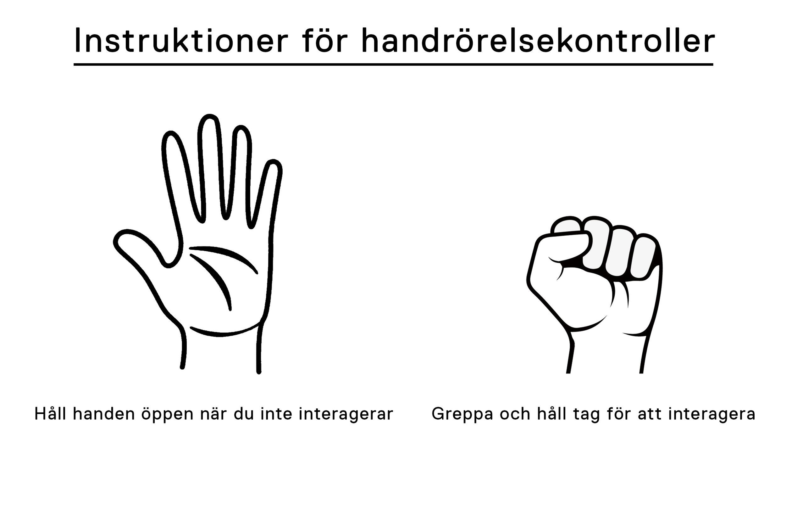 Hand Gesture Controls - Swedish.jpg