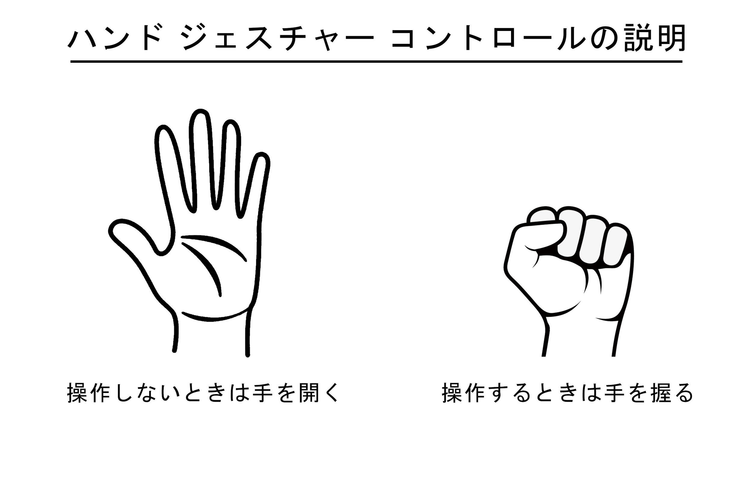 Hand Gesture Controls - Japanese.jpg