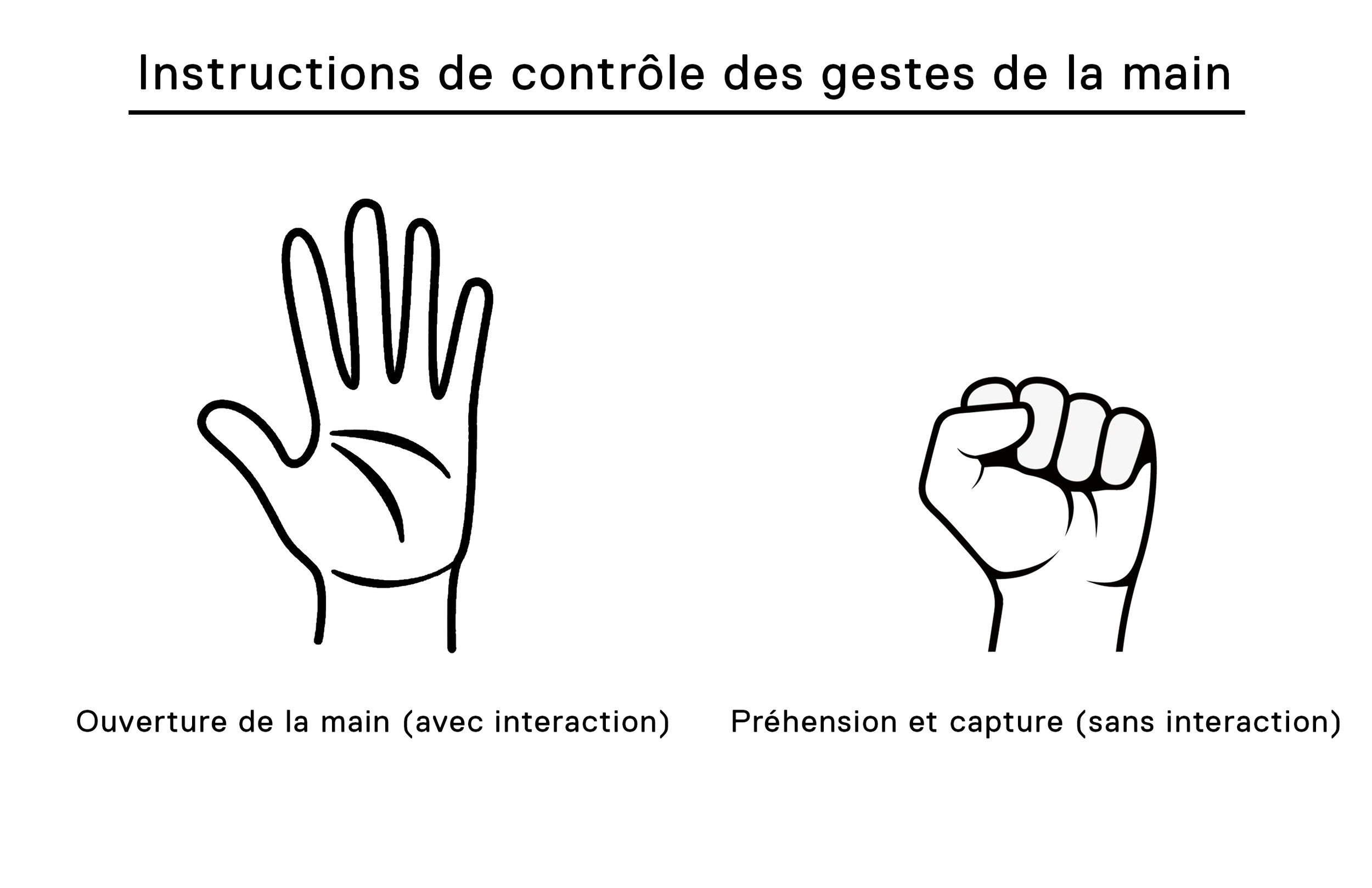 Hand Gesture Controls - French.jpg