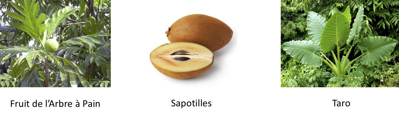 3 Fruits - copie.png