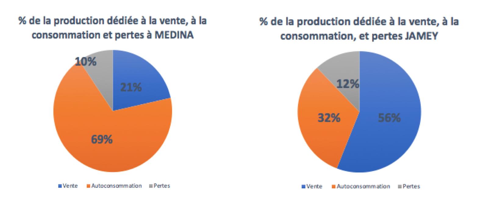 Schéma de la répartition des ventes, de la consommation et des pertes à Medina et Jamey. Source Th. Emery
