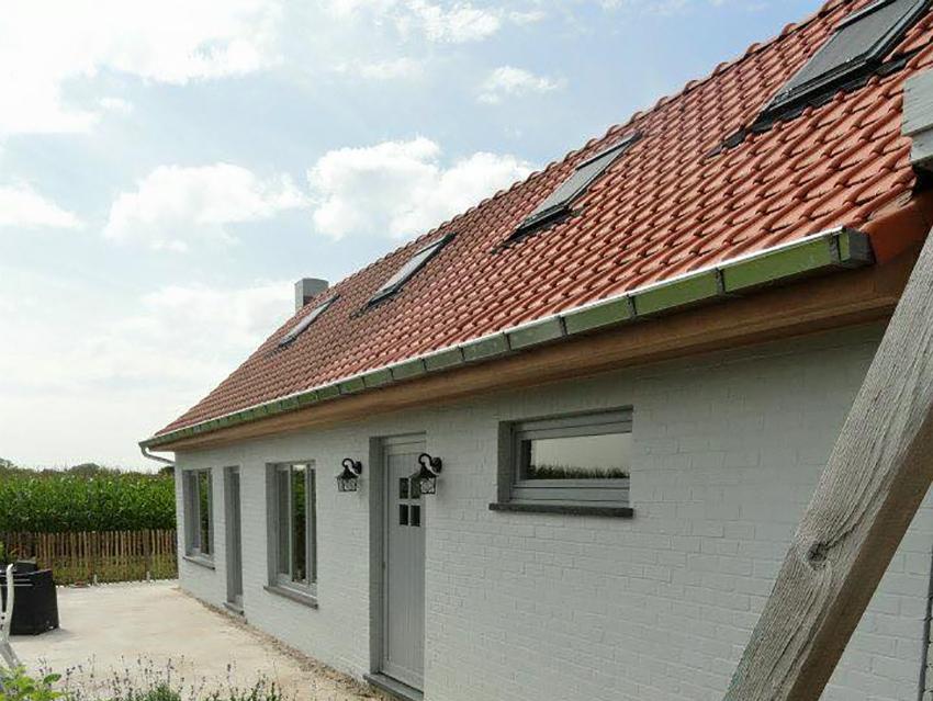 Oversteek en dakgoten vernieuwen - zink en ceder.jpg