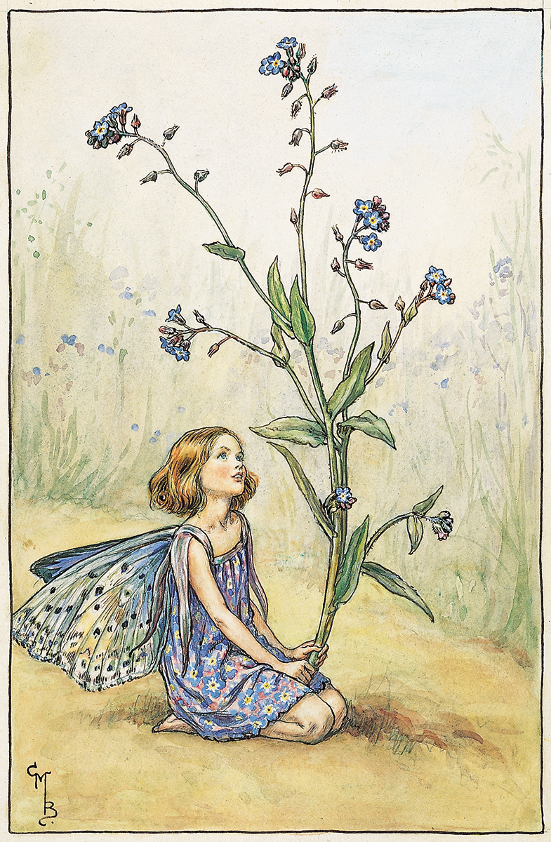 Forget-Me-Not Fairy by  Cicely Mary Barker