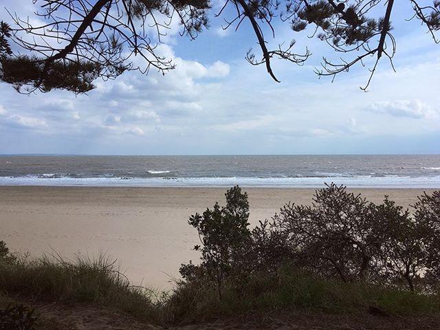 Weithiau, mae'n teimlo fel rwy'n byw mewn baradwys // Sometimes, it feels like I live in paradise.  #abertawe #swansea #cymru #wales #seawitch #gwrachymor