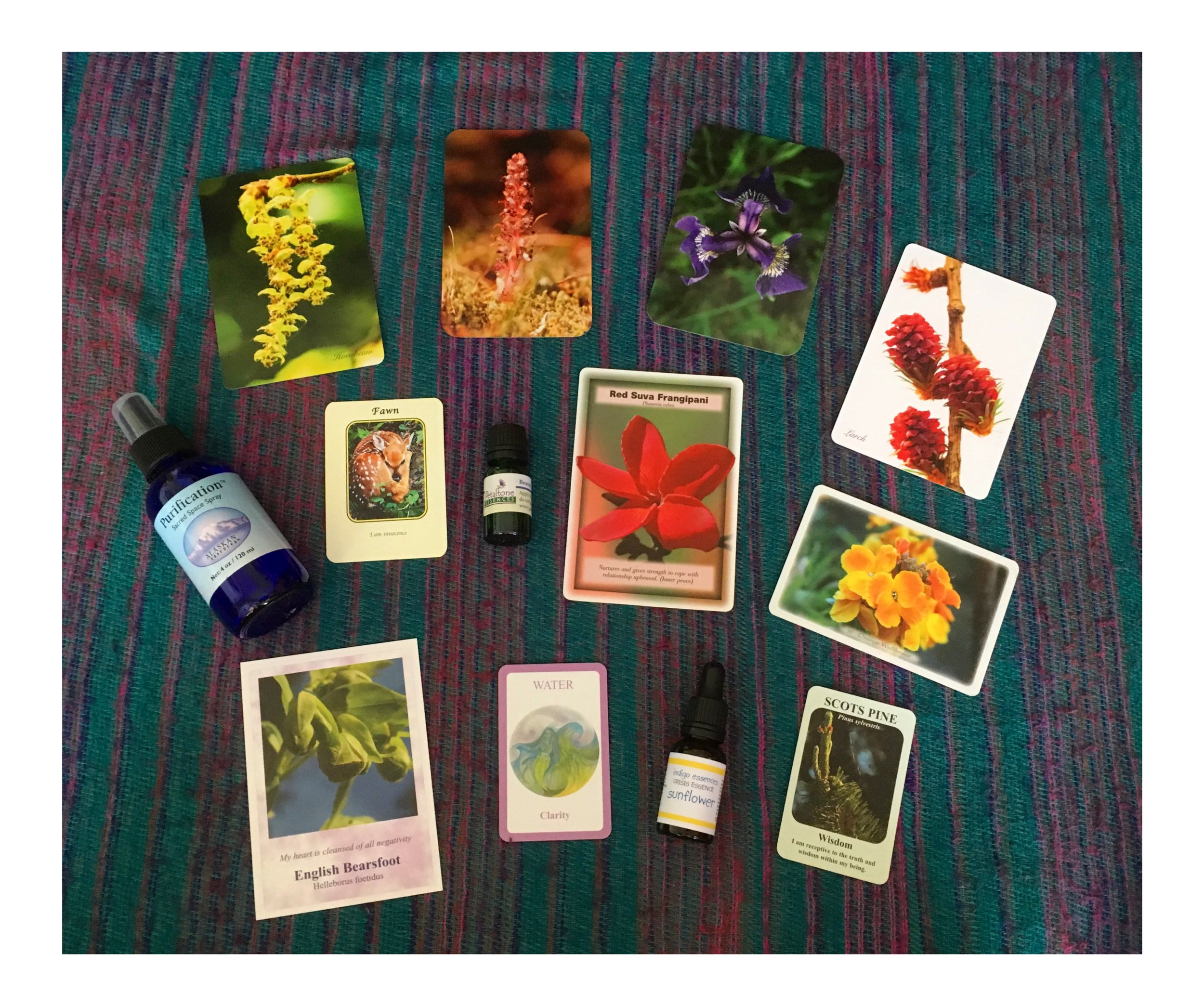 A selection of cards from the numerous Nature-inspired decks we may work with during Nature Readings