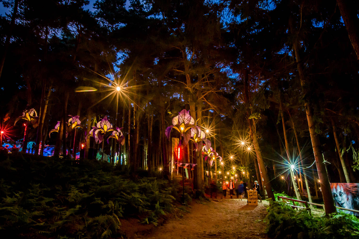 Latitude festival 2016820 Night Lights.jpg
