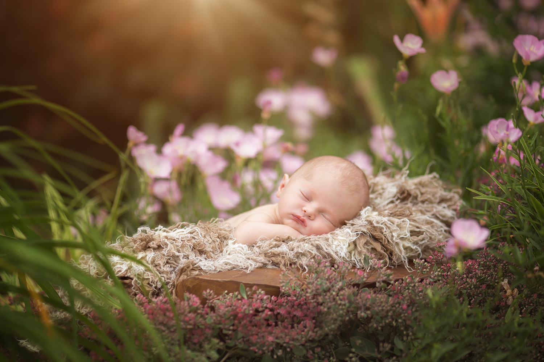 baby in flowers.jpg