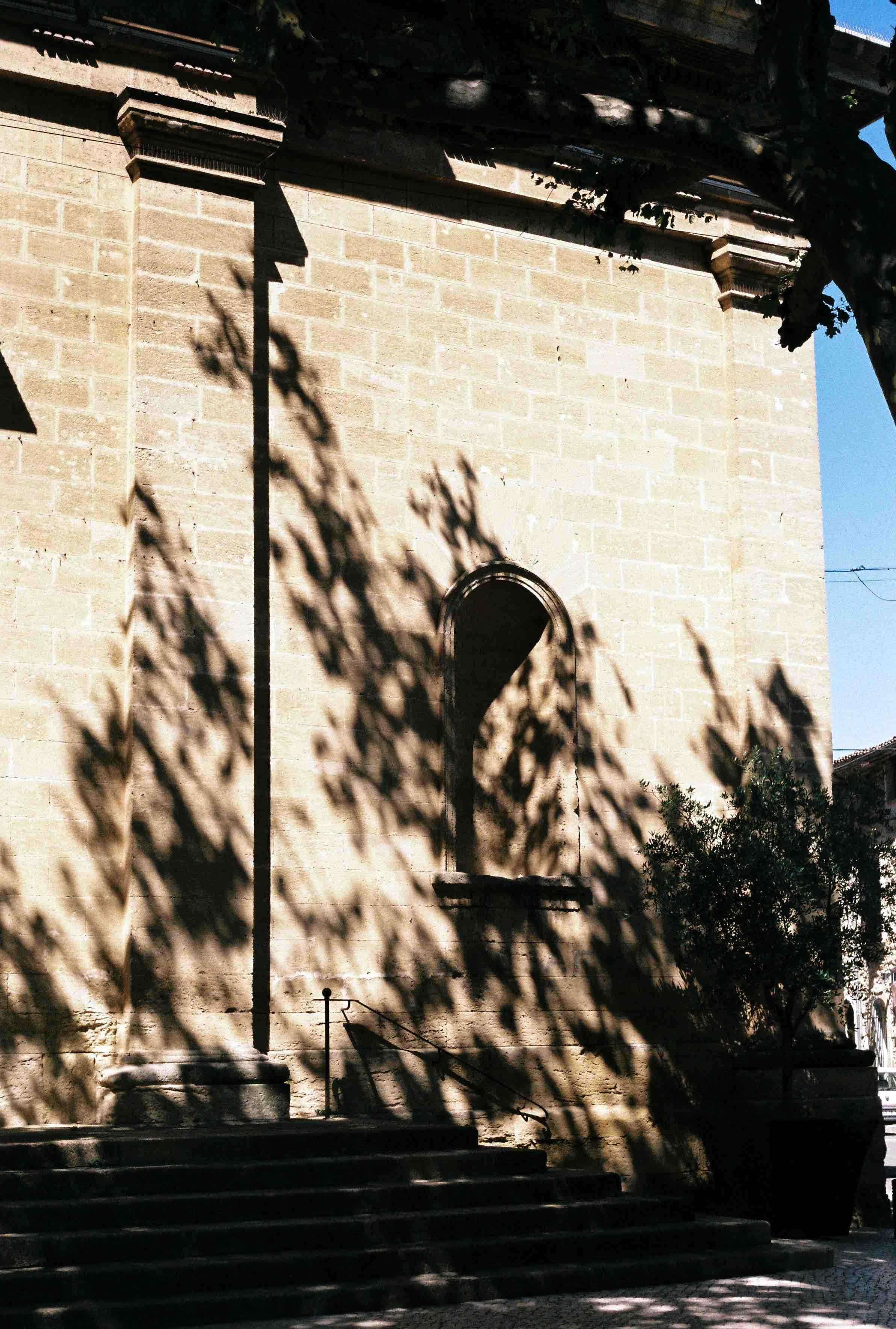 Provence + pepe-142.jpeg