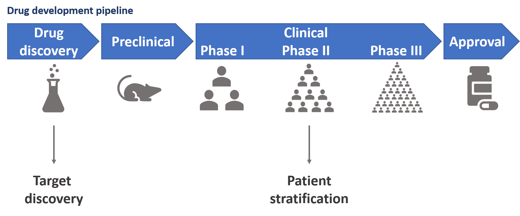 Figure 1: Simplified schematic of the drug development pipeline and two ways in which human genetics studies can impact this pipeline – target discovery and patient stratification.
