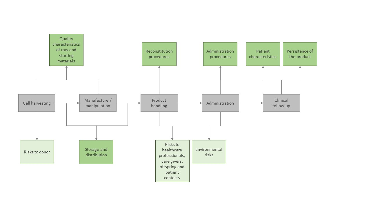 Figure 1: High-level flowchart of sources of ATMP-specific risks