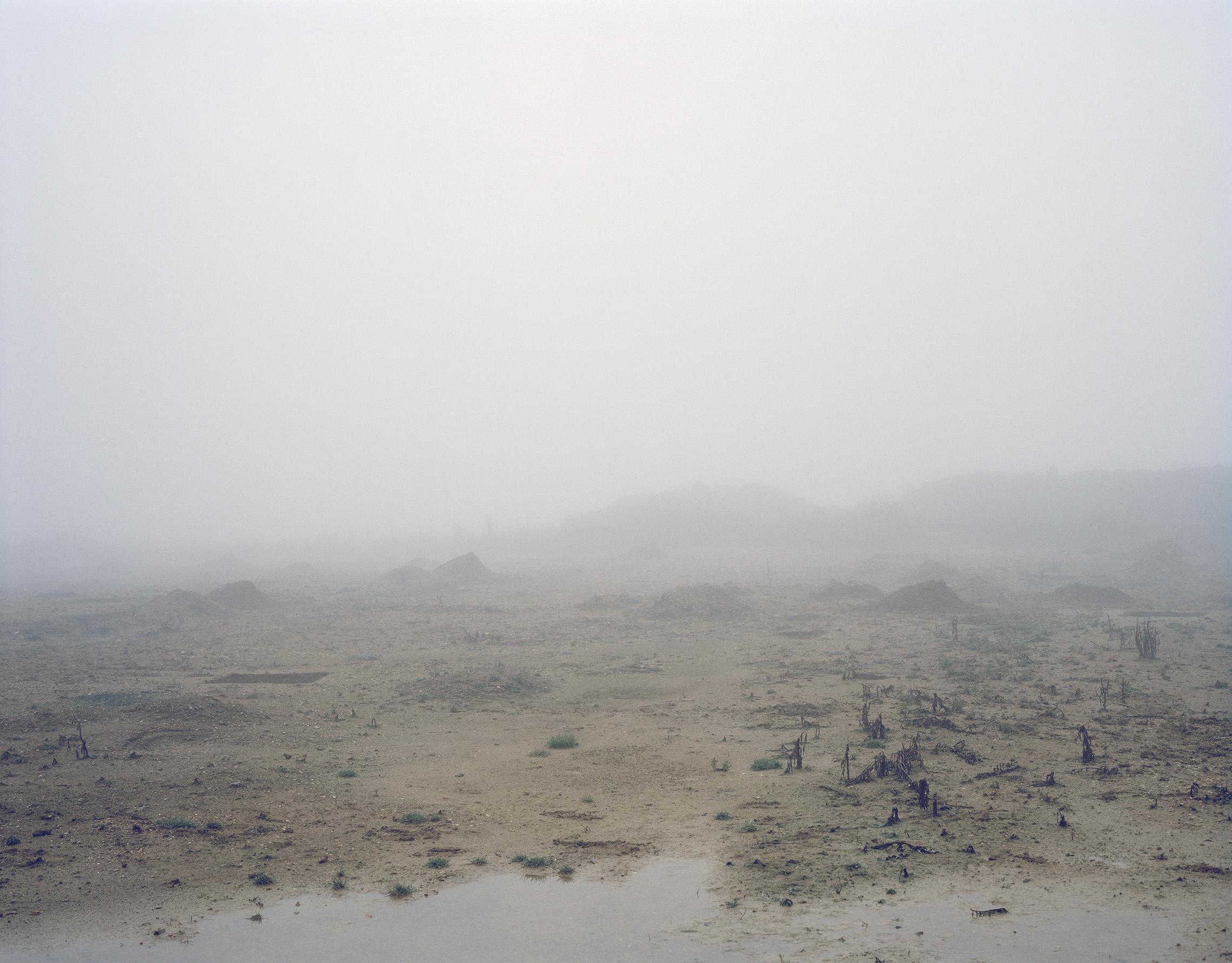 Tom-Lovelace-Site-407-Landscape-No.2.jpg