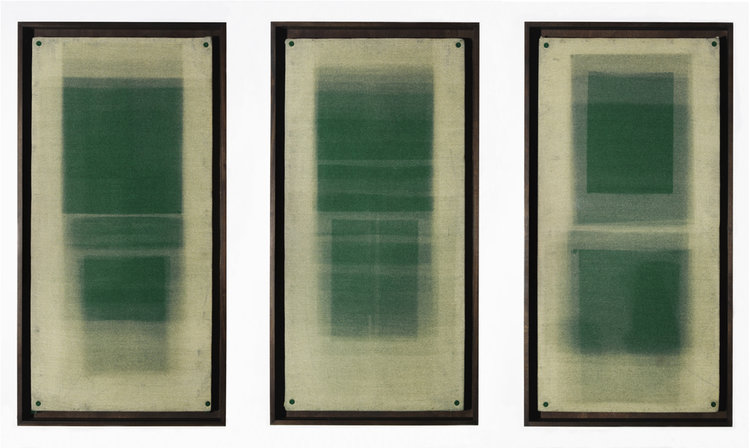 Forms in Green, Triptych . Unique Photograms. 2011