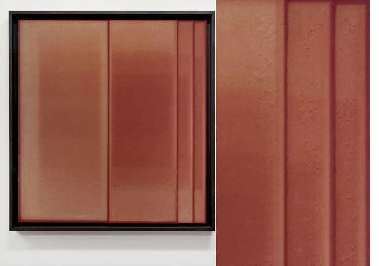 Untitled Red, No3 . Unique Photogram