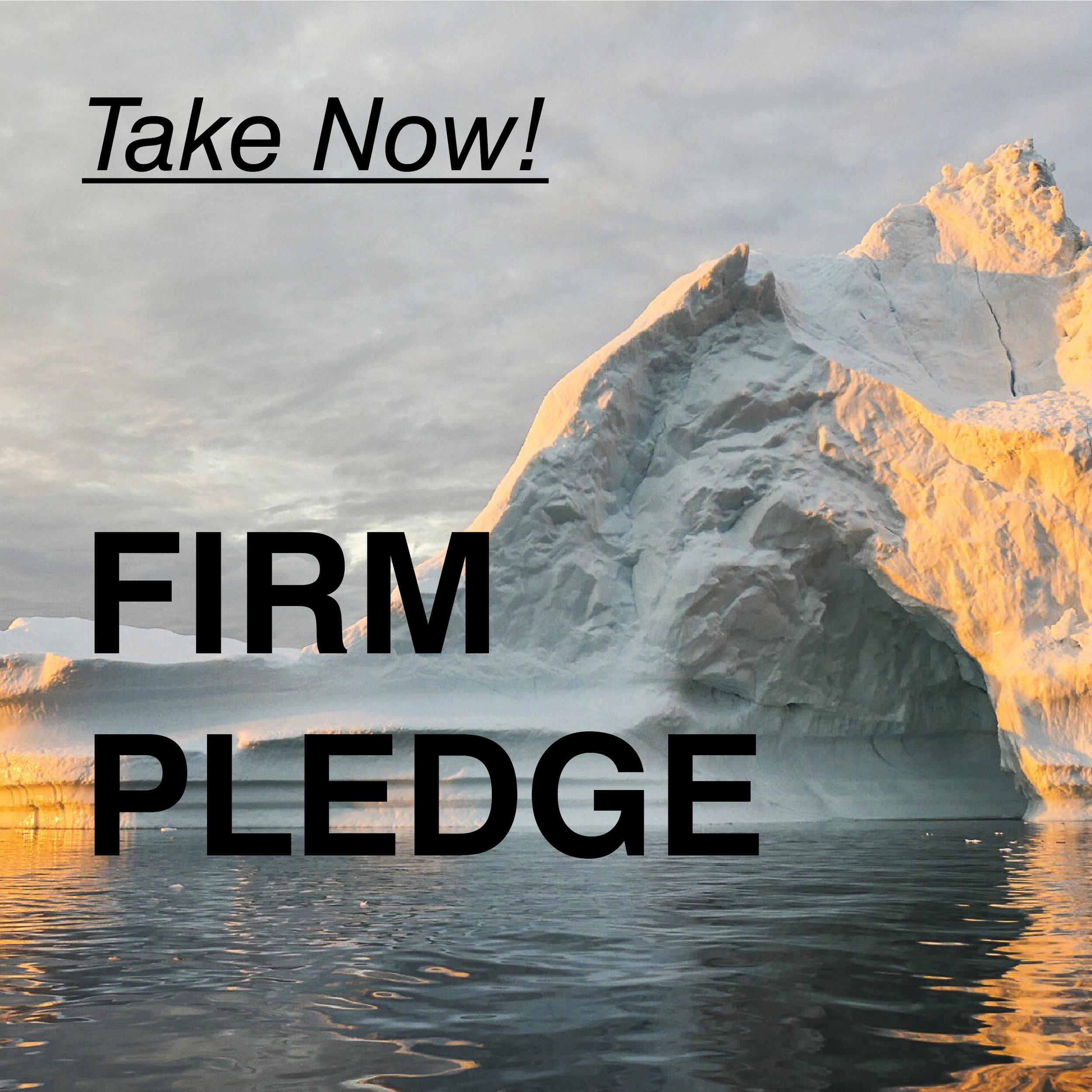 Pledge-02.jpg