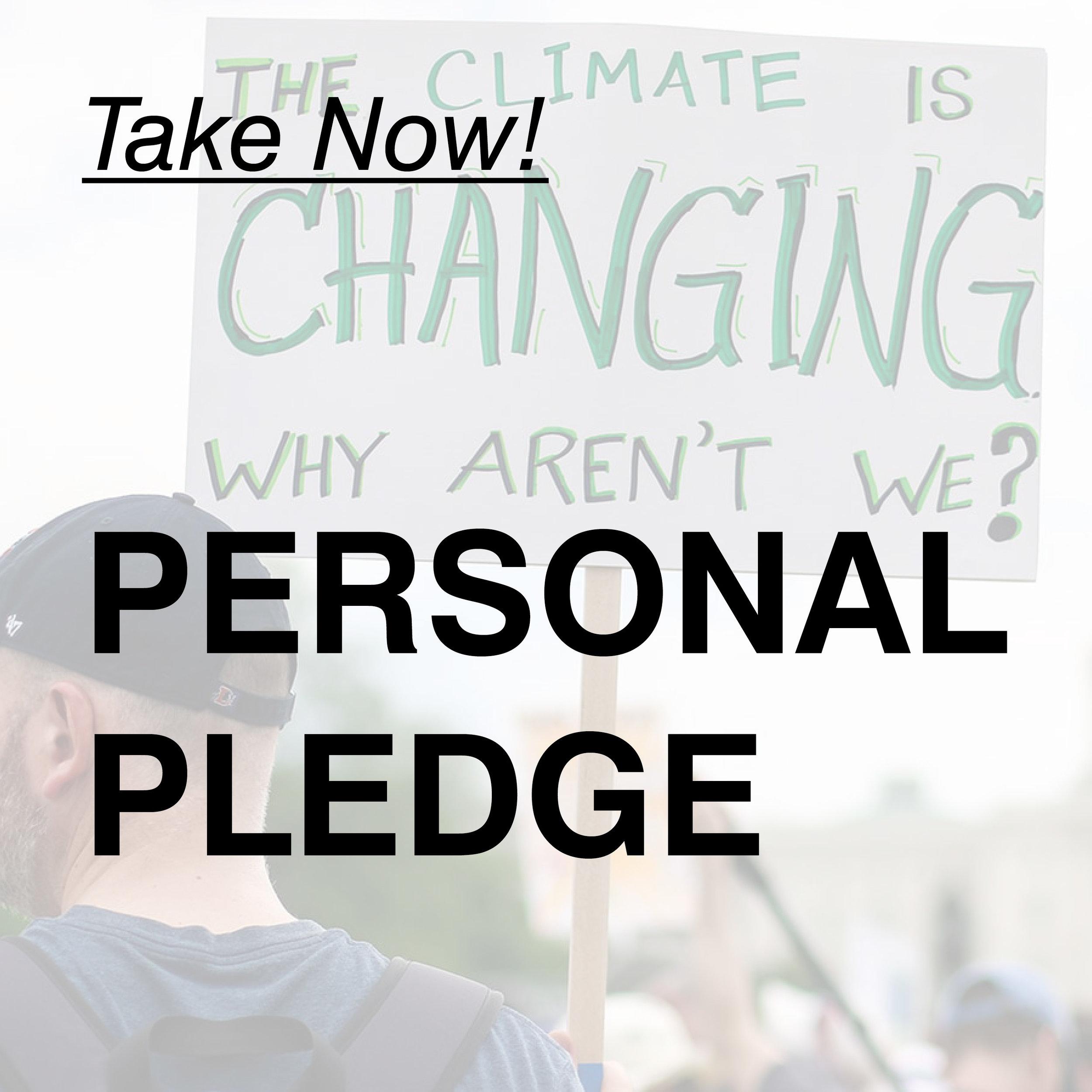 Pledge-01.jpg