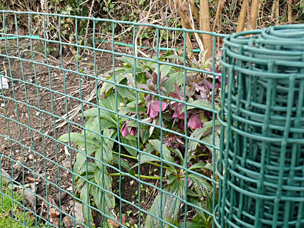 Awesome-Plastic-Garden-Fencing.jpg