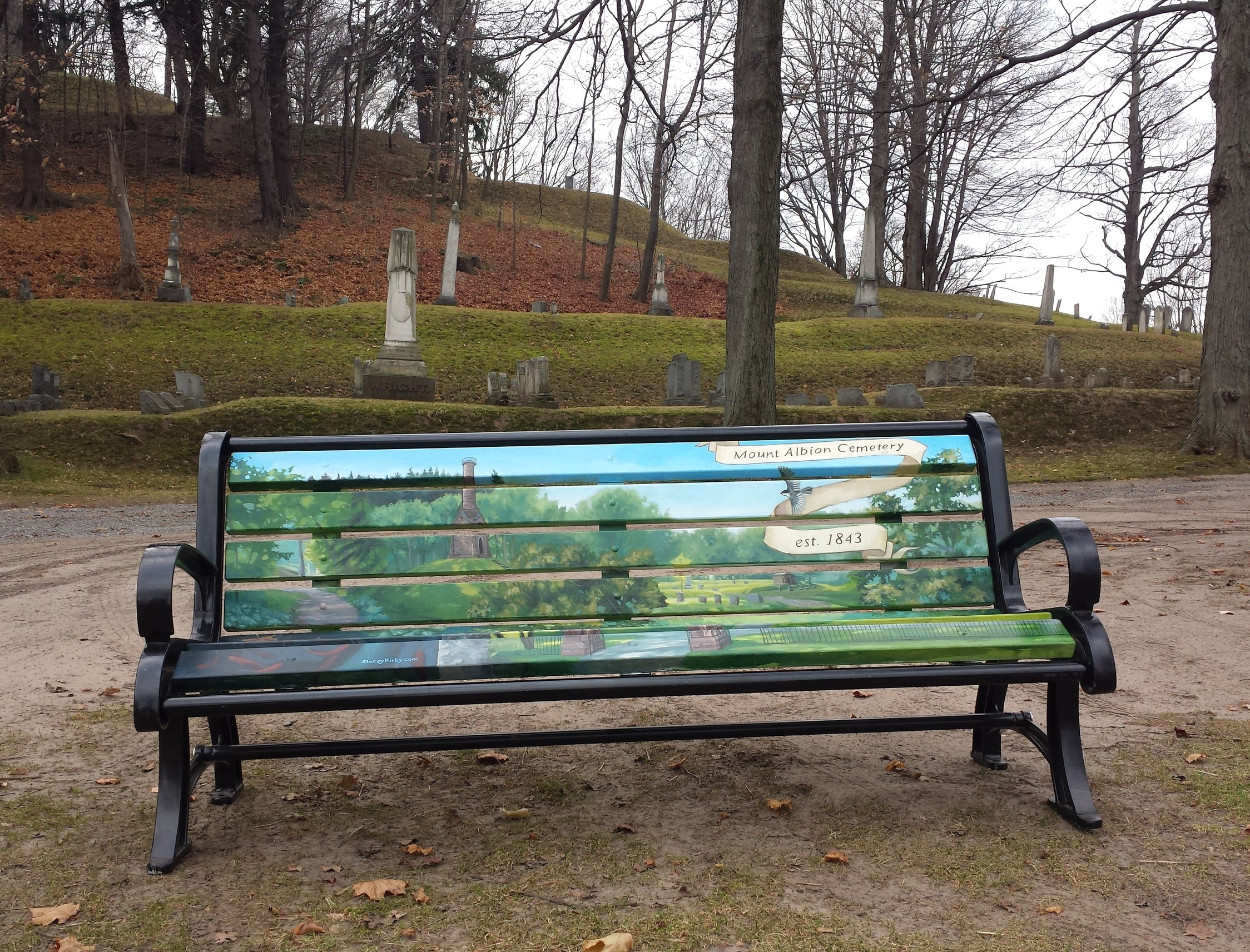 Albion Main Street Bench, Featuring Mount Albion Cemetary