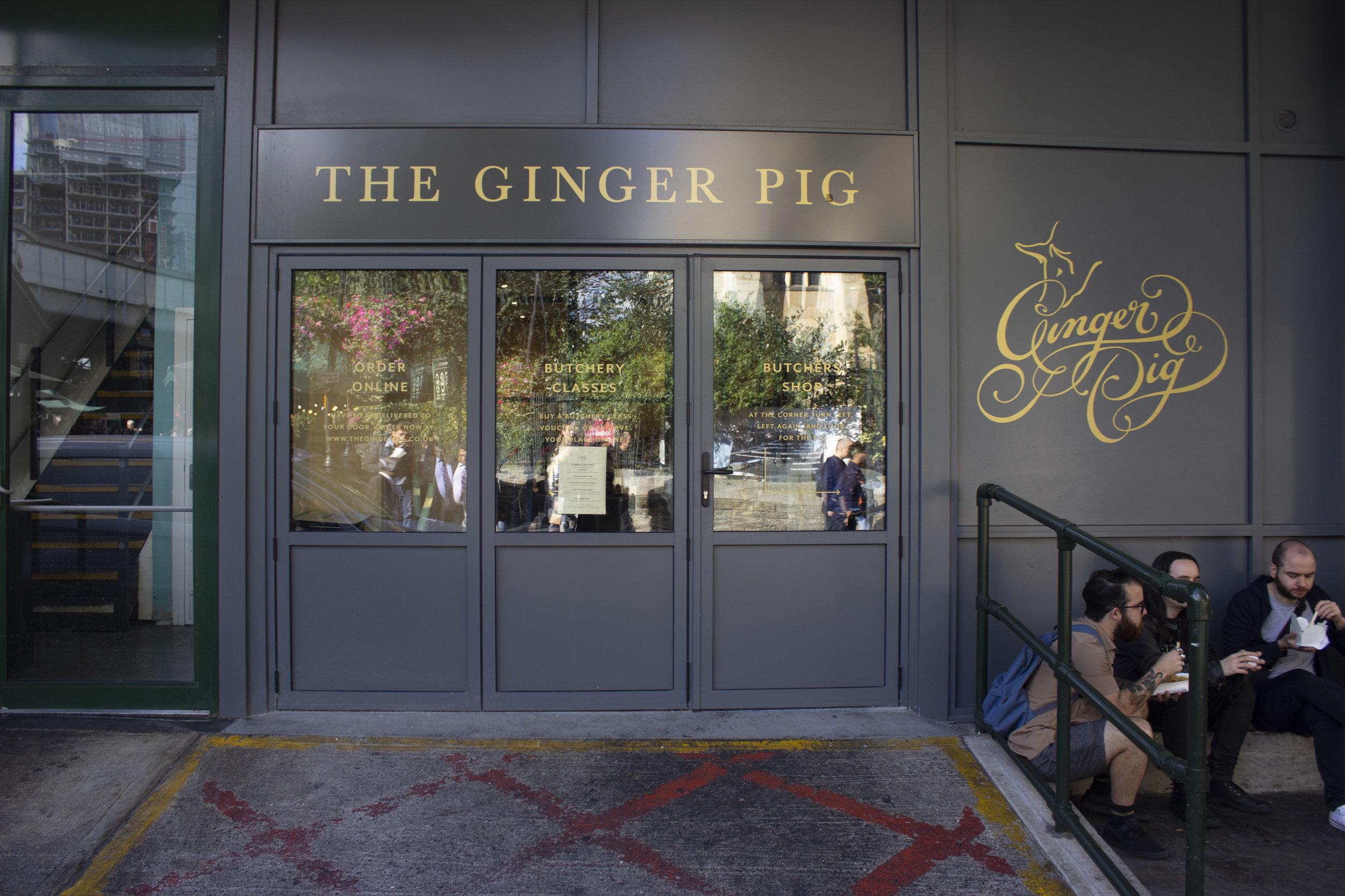Ginger_pigJPGS_30.jpg