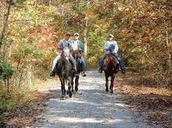 Bill's Riding Stables Corbin, KY