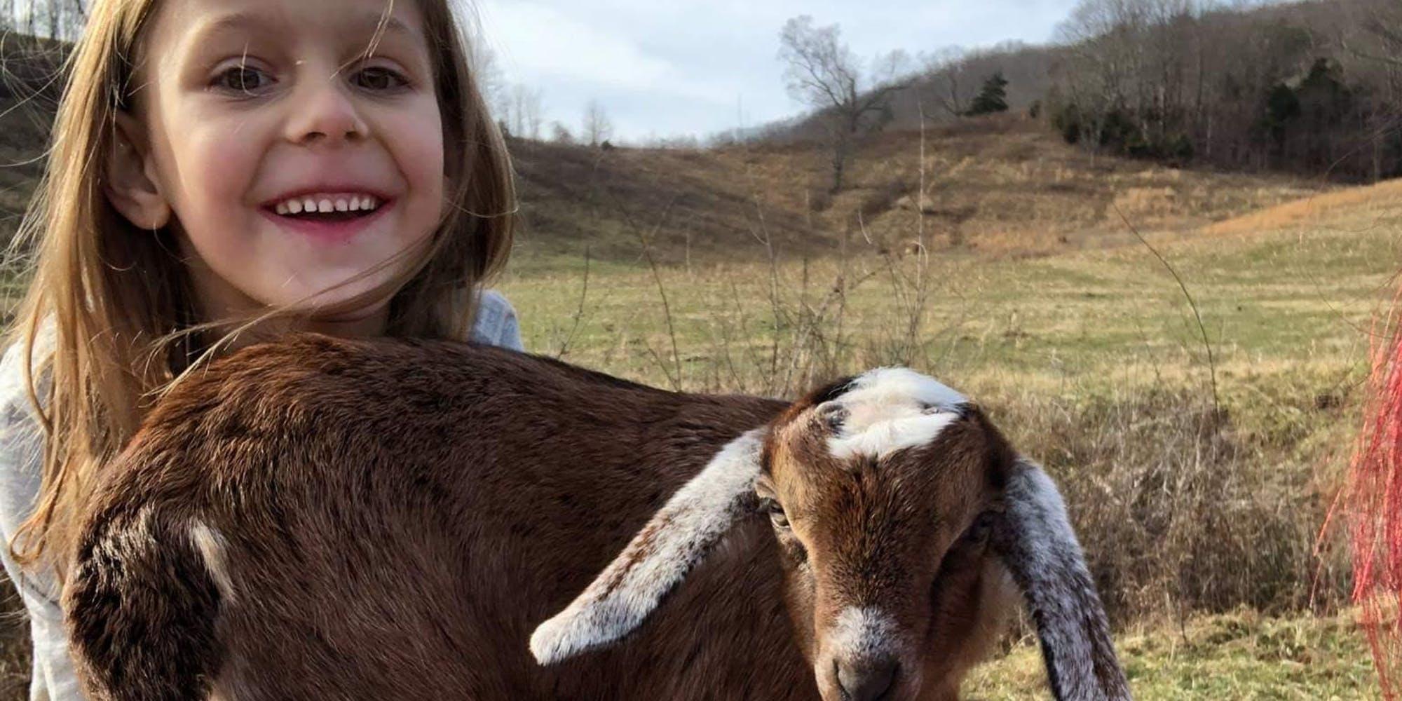 Friendly Farm  1104 Rebel Hollow Rd, Tazewell, Tennessee 37879