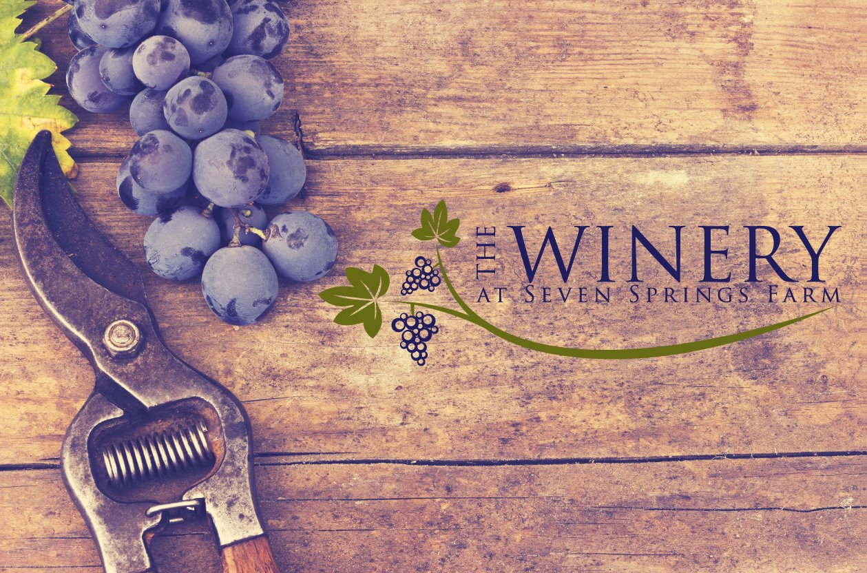 The Winery at Seven Springs Farm  Farm to table restaurant.  1474 Highway 61 E,  Maynardville, Tennessee   http://www.winerysevenspringsfarm.com/