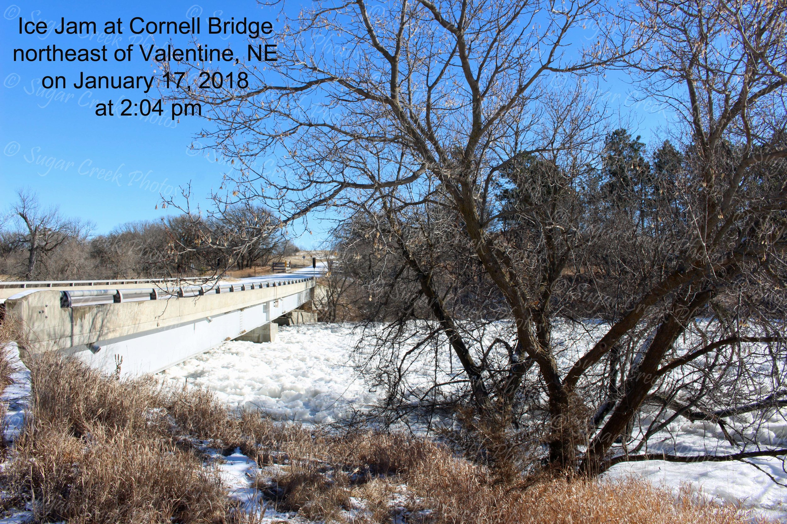 SCP Ice Jam at Cornell at Jan 17 pm WM IMG_7707.jpg