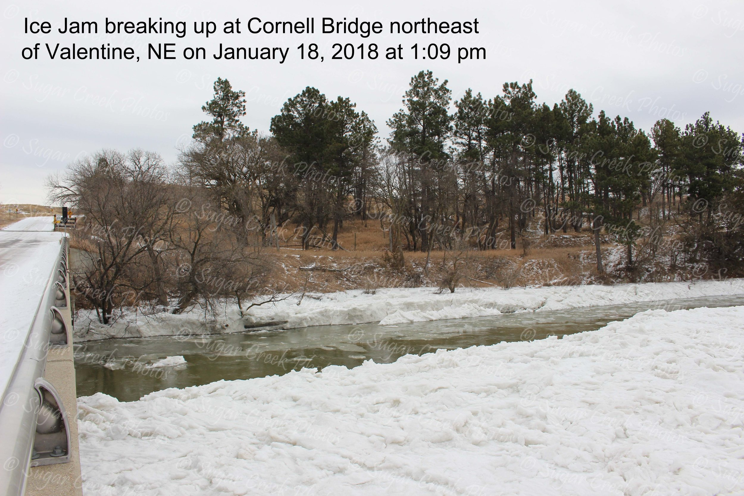SCP ice jam at Cornell Jan 18 pm WM IMG_7982.jpg