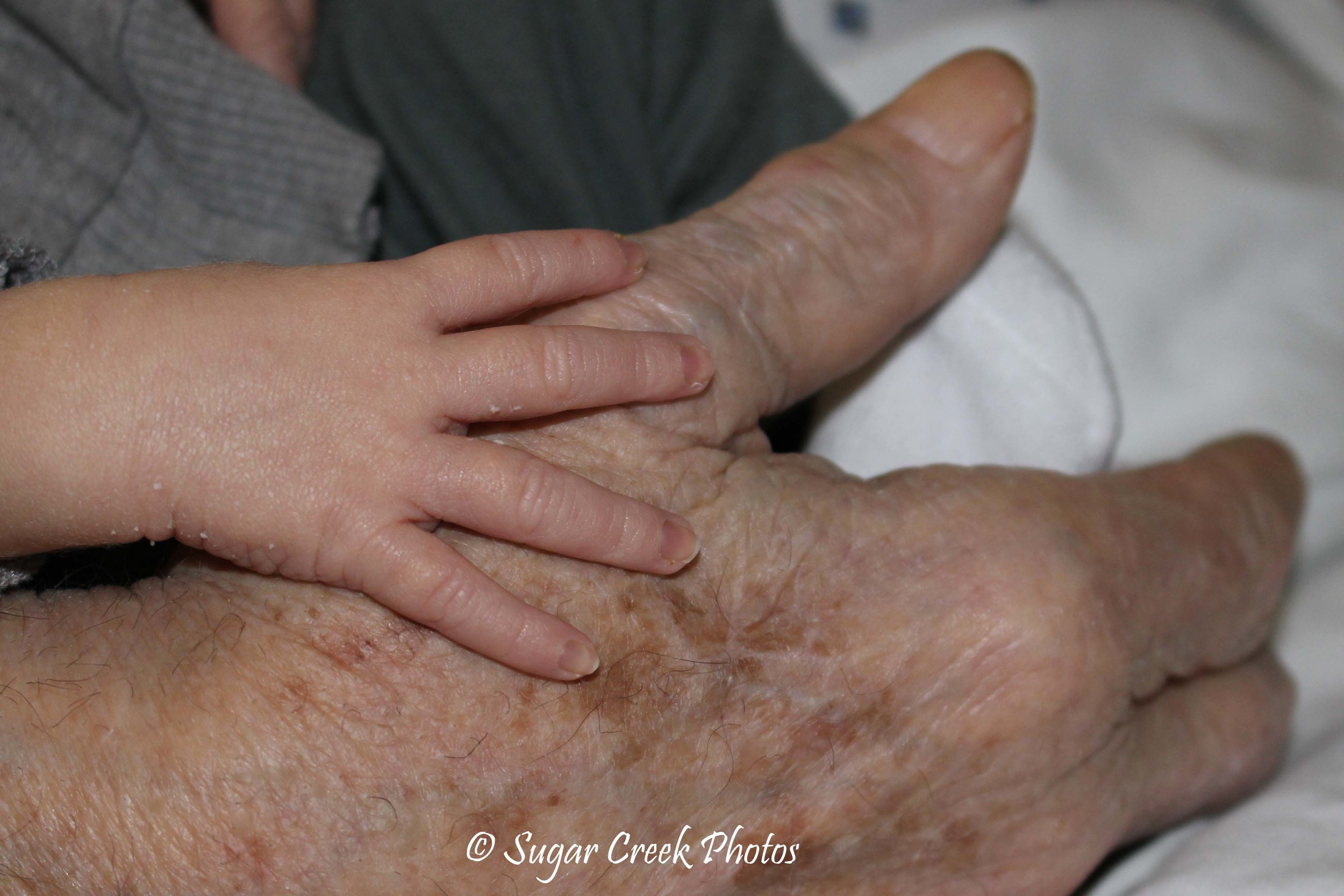 """My favorite picture from 2017. """"Young and Old"""" My 85 year old father and 2 week old nephew's hands I was able to photograph them in January 2017. My dad passed away a couple months later."""