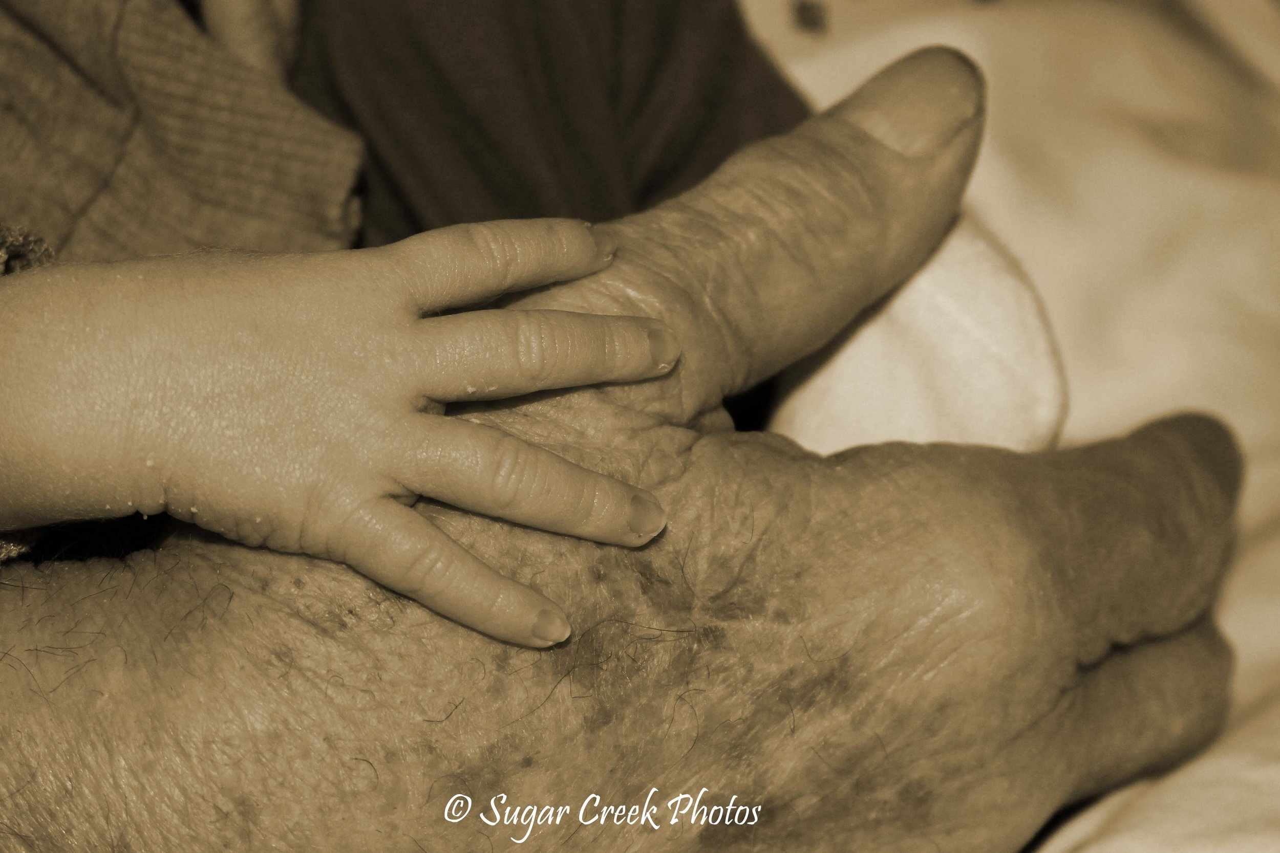 SCP hands sepia 4x6 IMG_6315.jpg