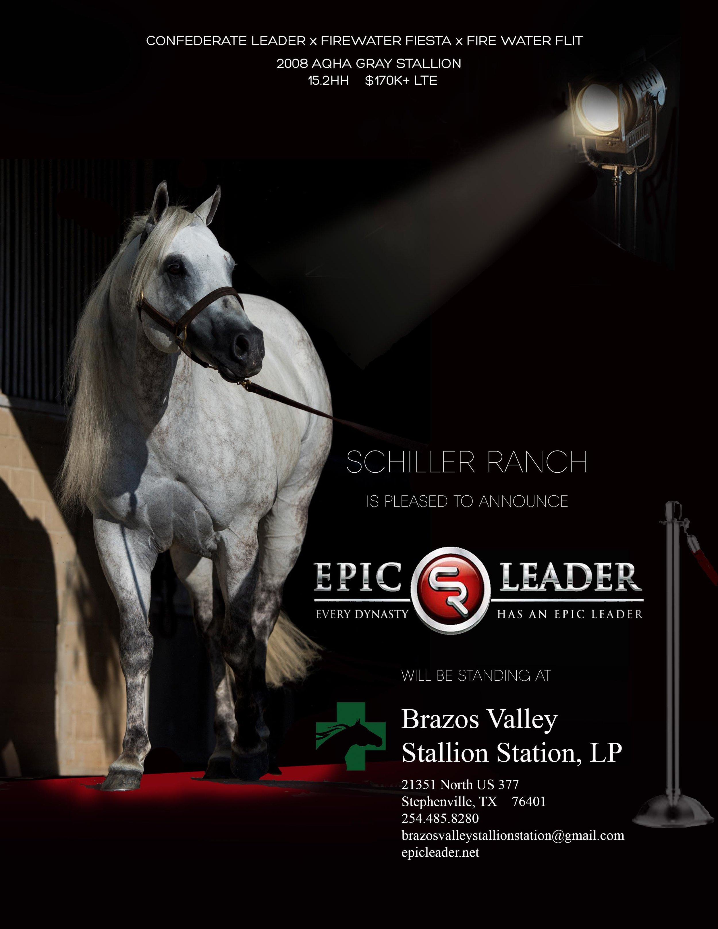 Brazos Valley Stallion Station Proof 02.jpg