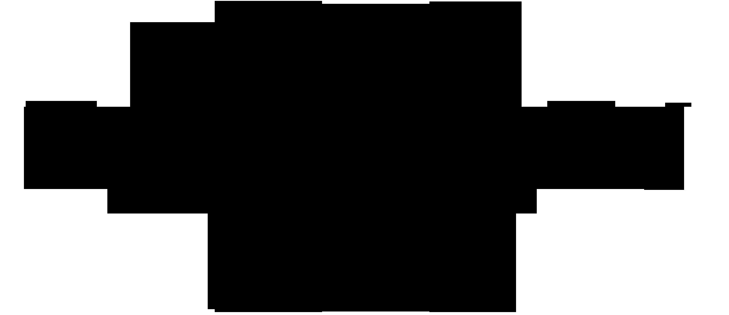 a logo tamarian.png