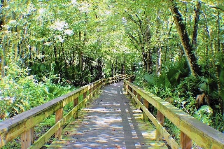 os-12-best-public-parks-central-florida-20151112.jpg