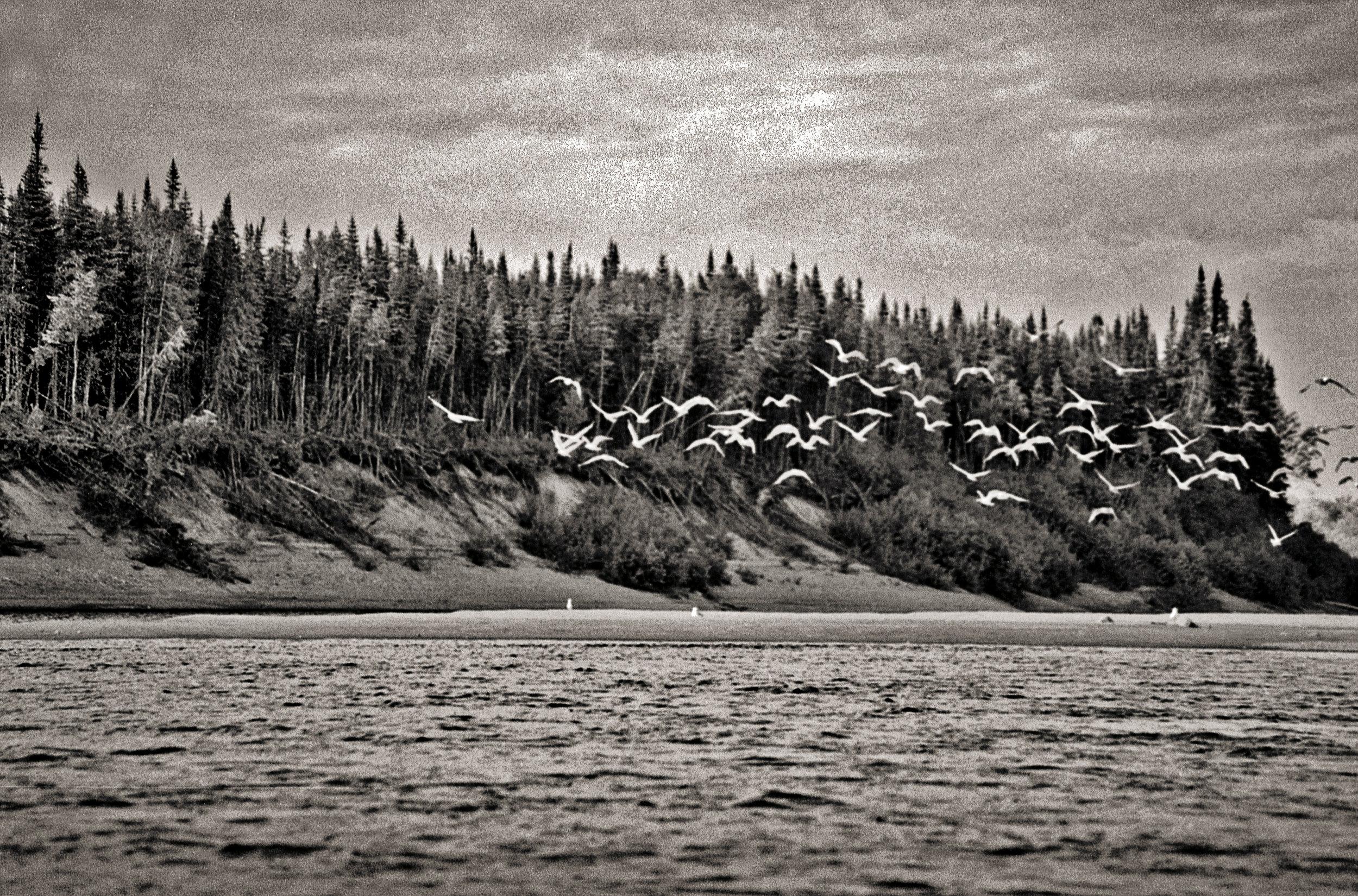 Lighroom 4 b canoes (87 of 254).jpg