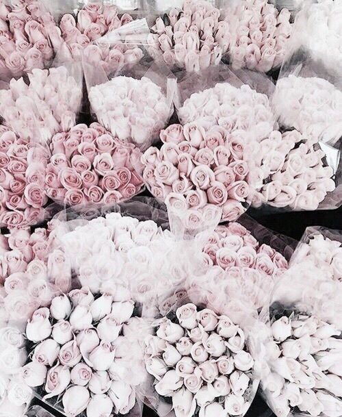 PINK BLOSSOMS - Flowers in any hue are on the top of our list, but there is something about pink roses that look prettiest in a vase perched atop a stack of books on the coffee table! Make it a point to have fresh flowers weekly--you'll see what it does to your daily mood!