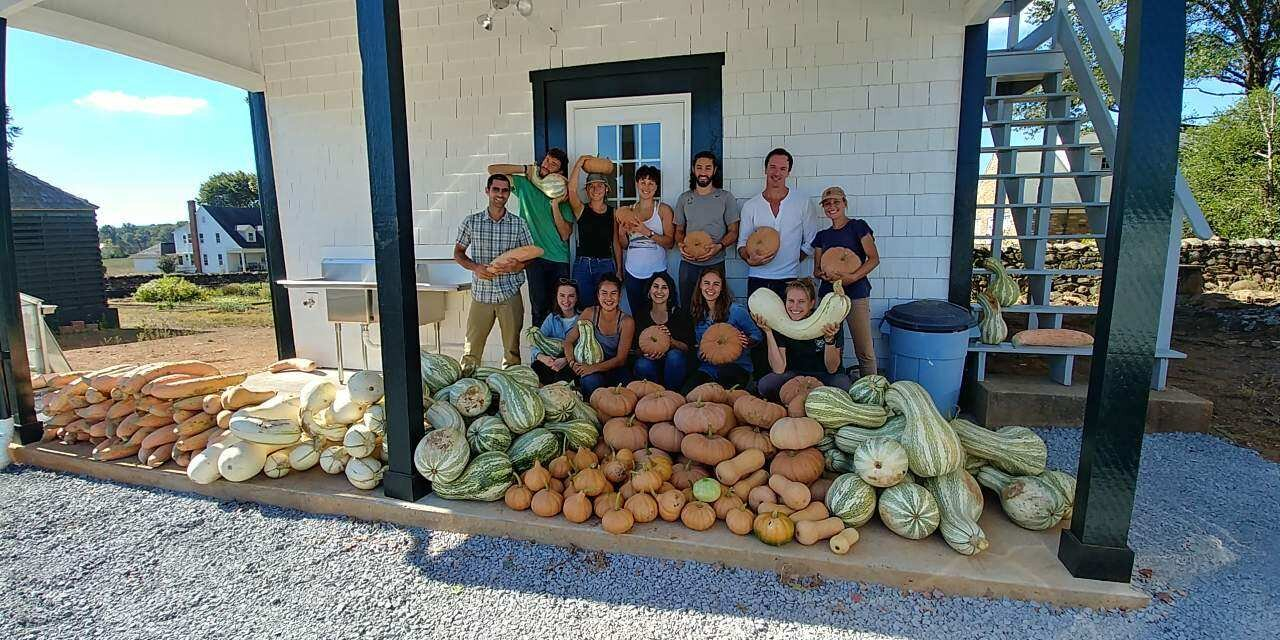 Students from the Yale School of Forestry & Environmental Studies help out with the haul.