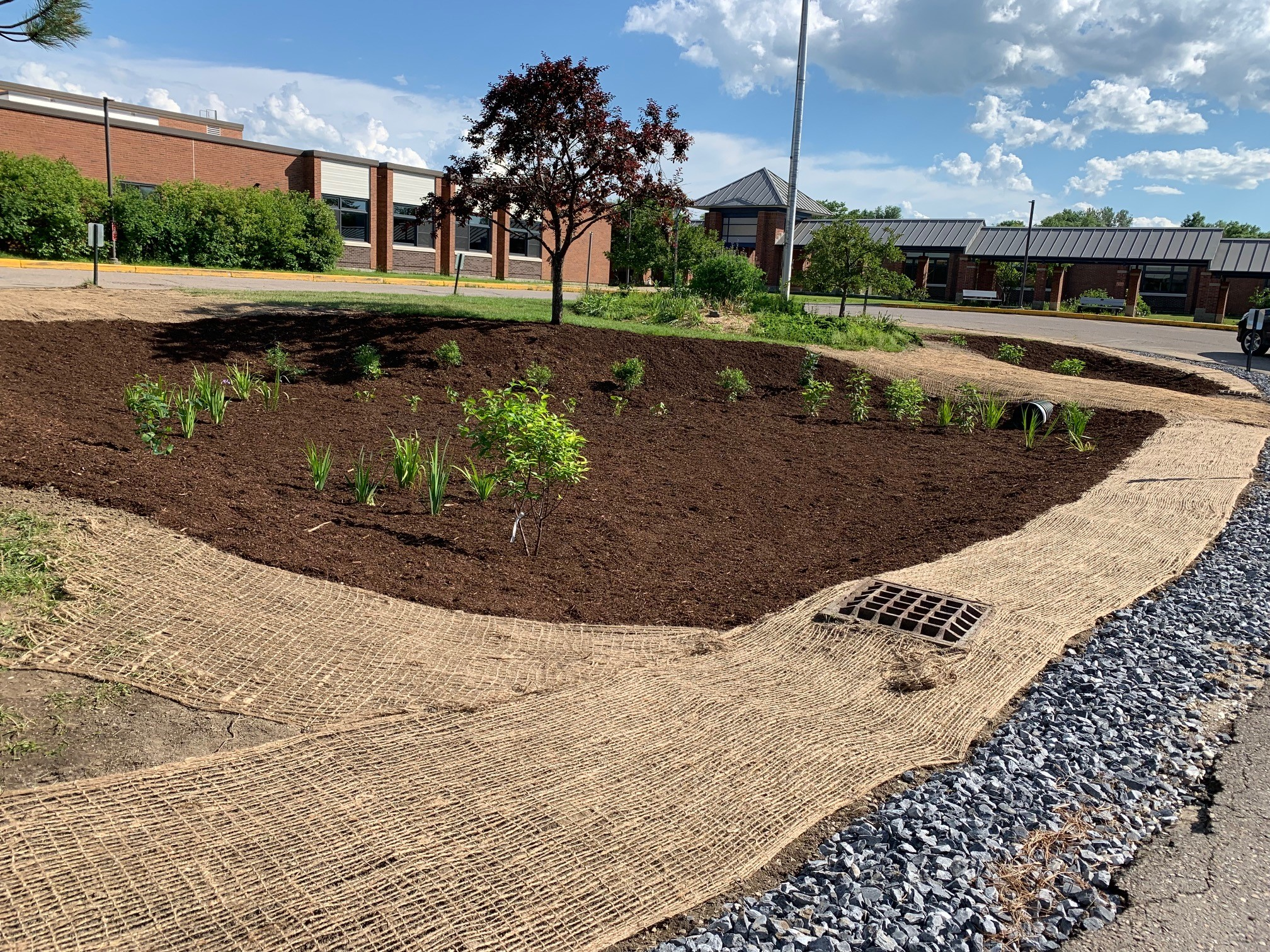 SCS Center Island after construction and plantings