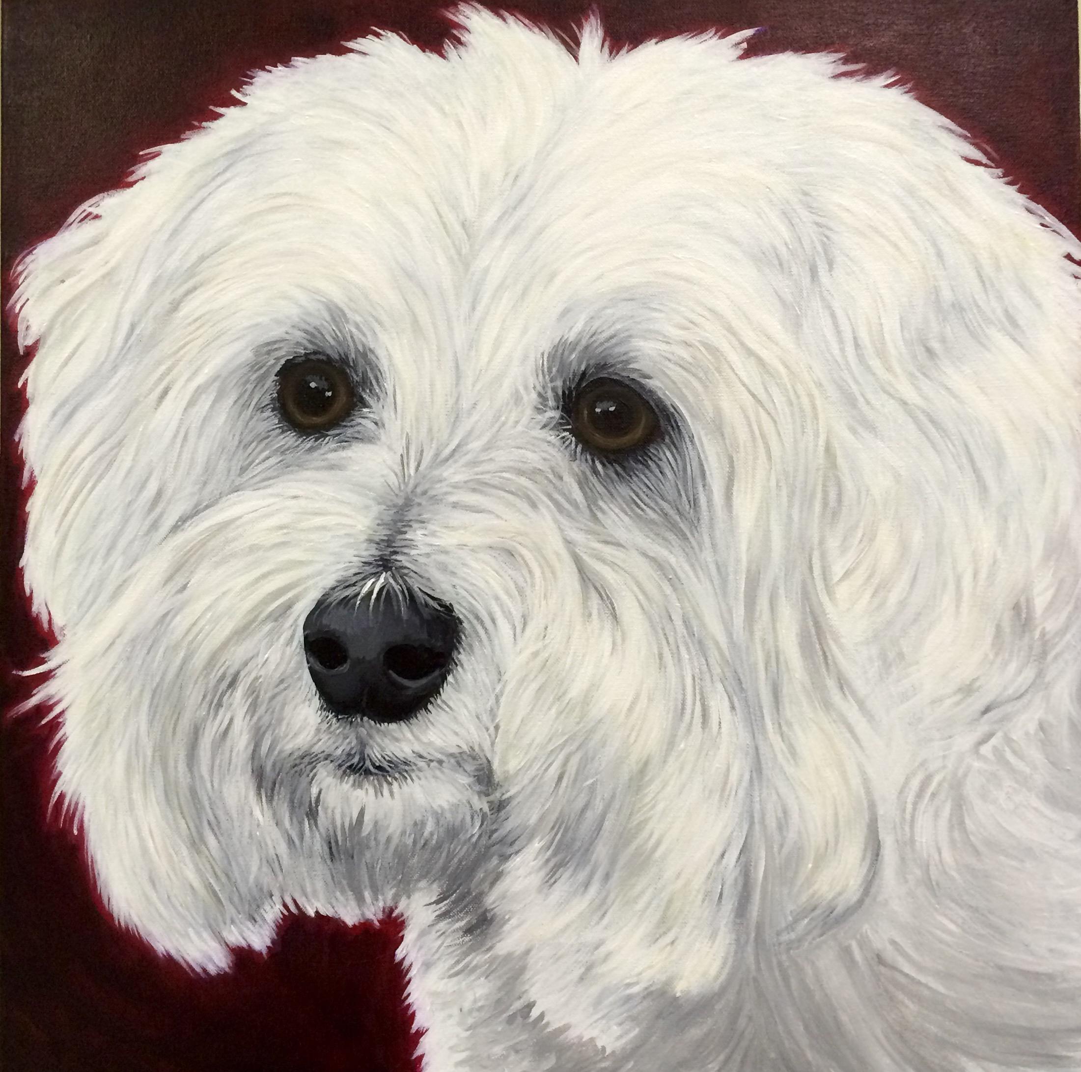"""Milou  , Acrylic on Canvas, 24""""x24"""""""