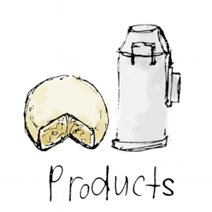 product header image.png