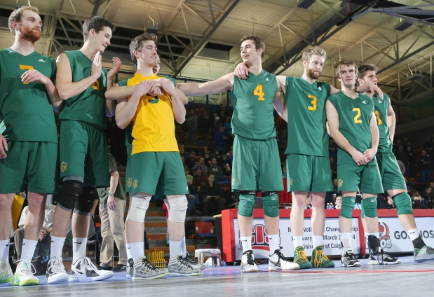 University of Alberta Golden Bears at the 2014 CIS Men's National Volleyball Championships