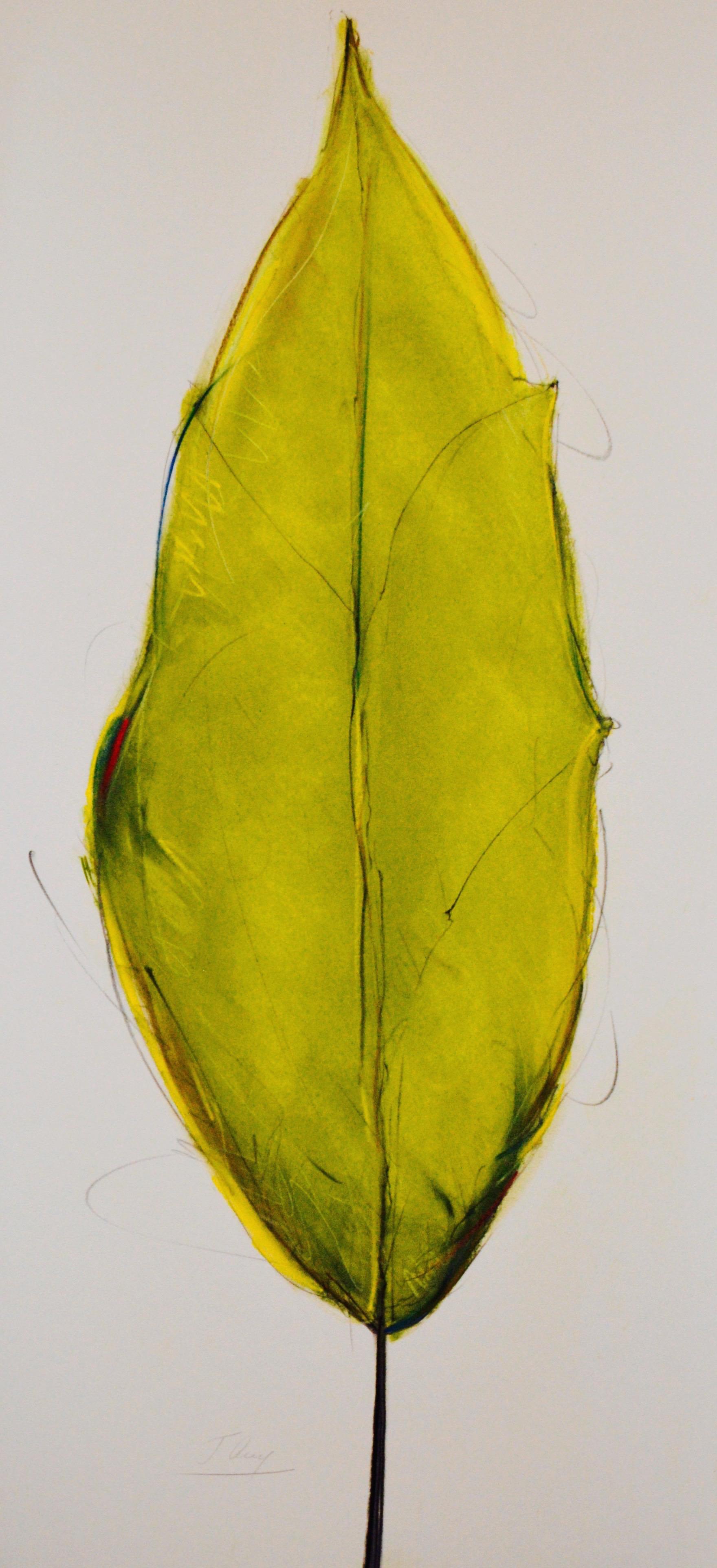 """""""Green Leaf"""" No. 2, 2015"""