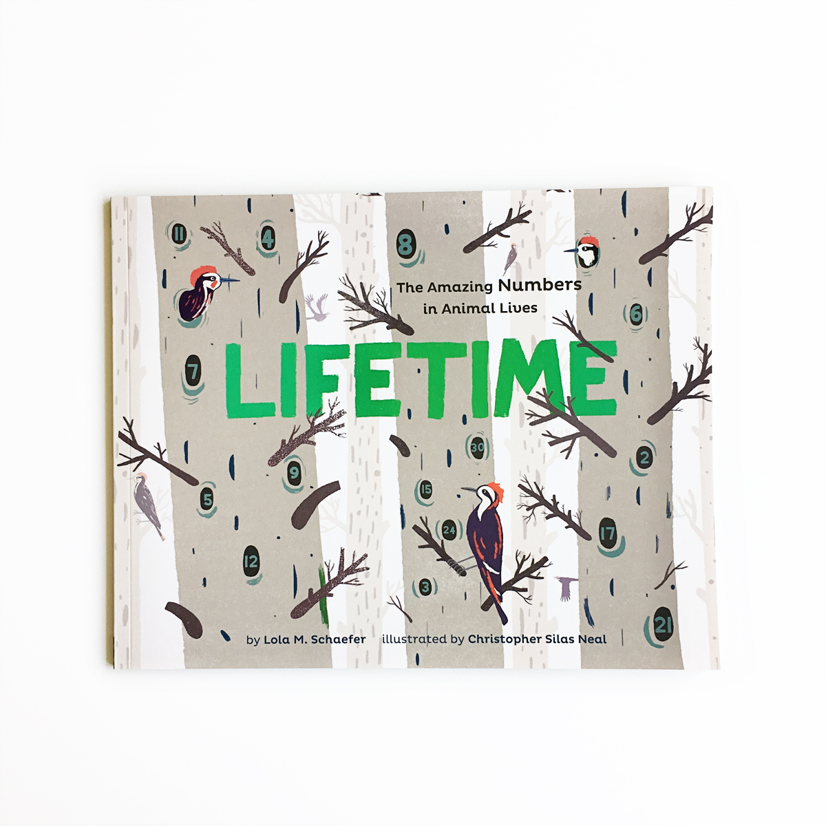 Lifetime | Little Lit Book Series
