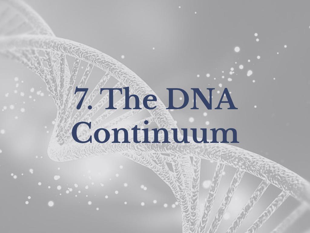 Lesson 7: The DNA Continuum